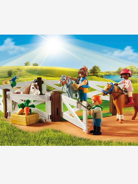 6927 Poney club Playmobil country Multicolore